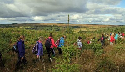 Visit Clare Attractions Amp Activities Cliffs Of Moher
